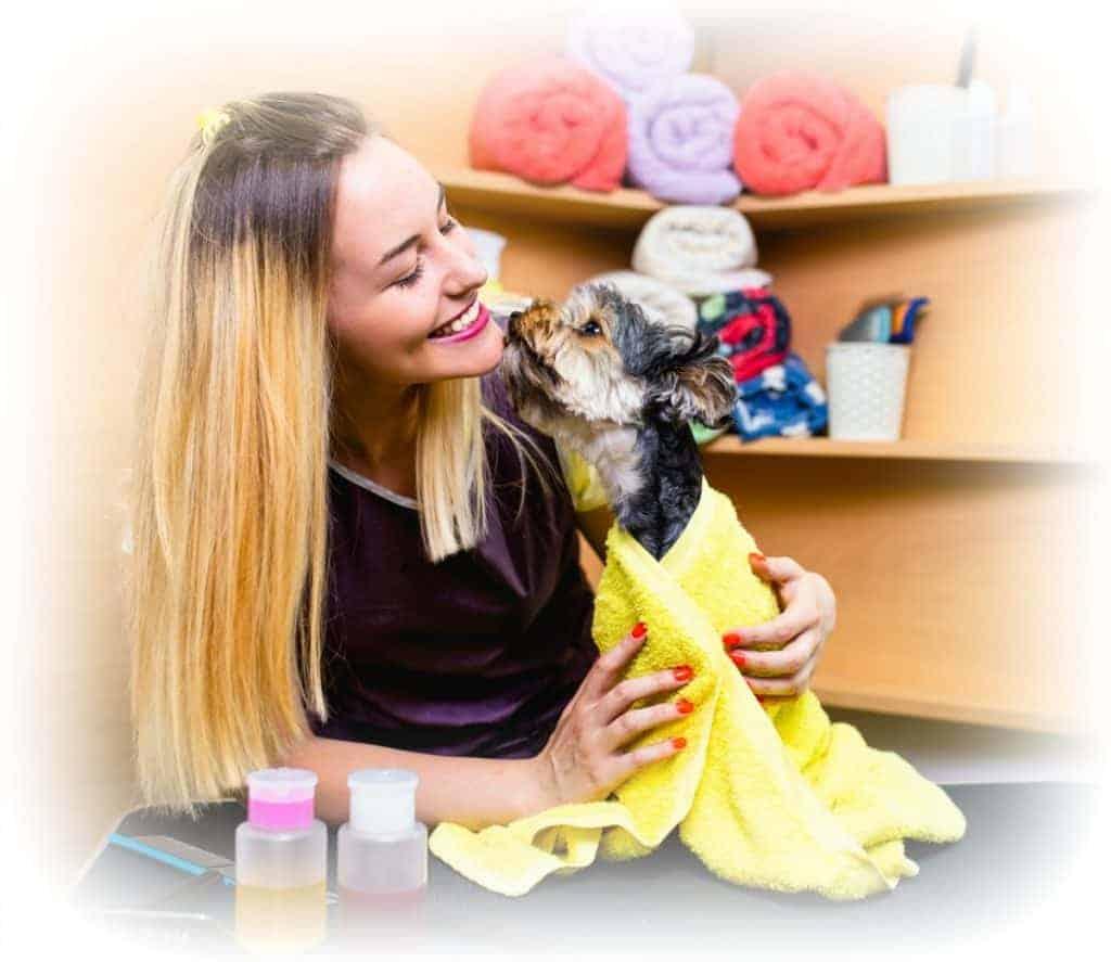 VET in schools animal care course