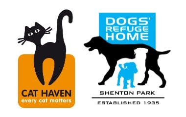 Learn animal studies at the Cat Haven and Dogs Refuge