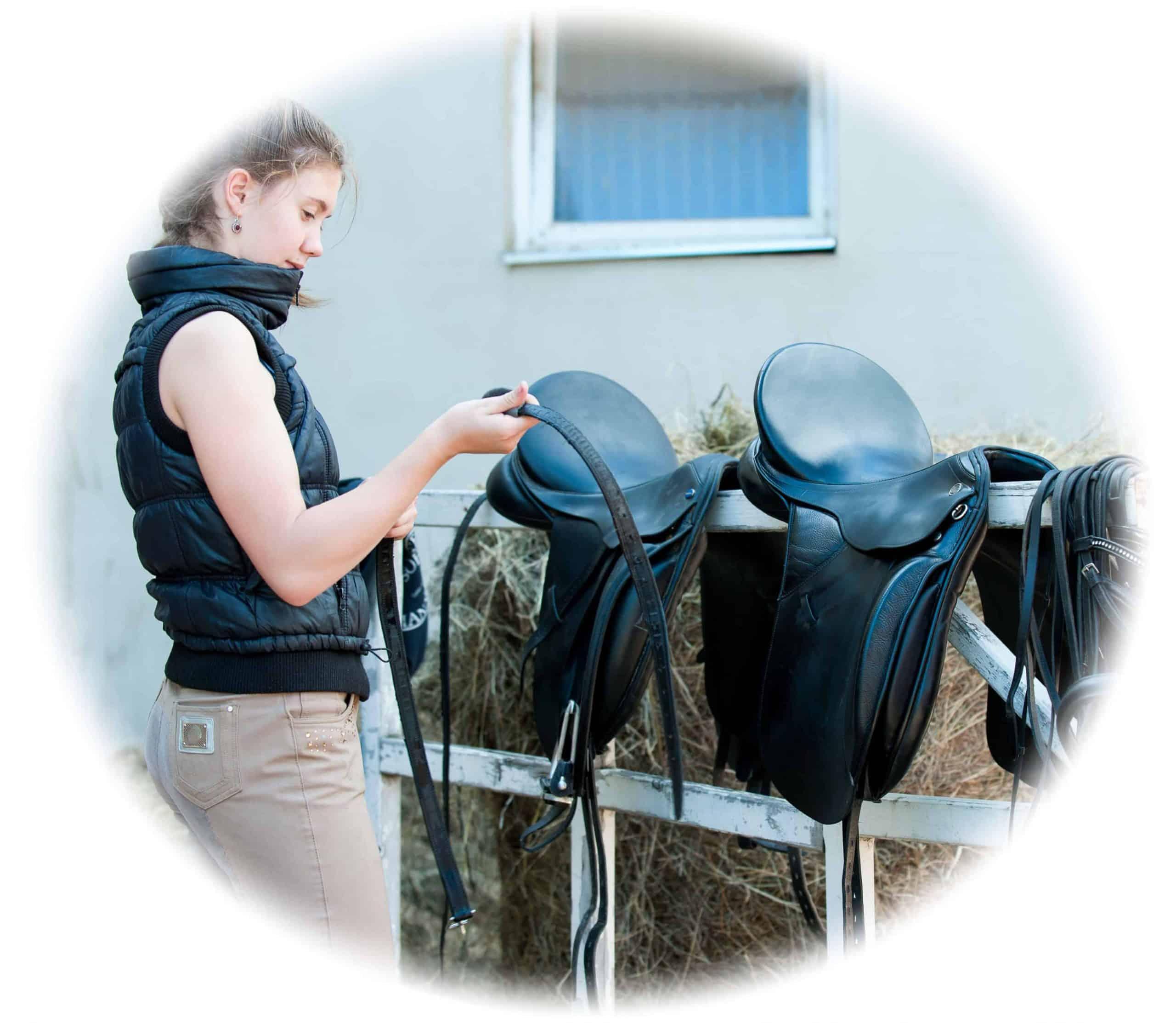 Practical horse care skills - training