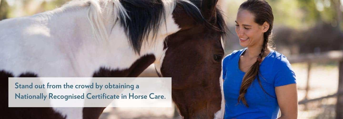 Careers working with horses in the equine industry