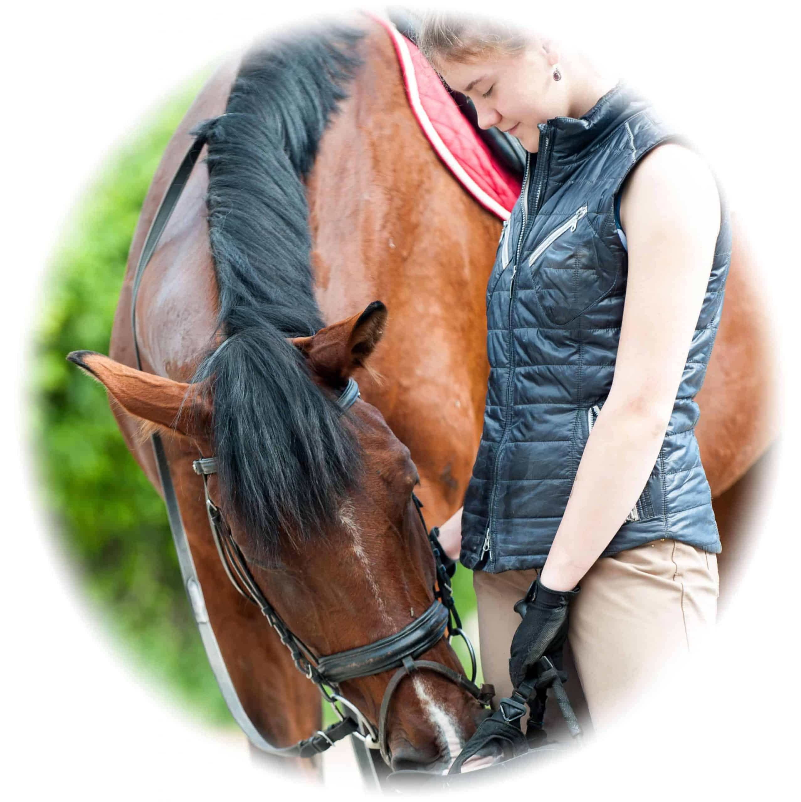 Perth Horsecare Perth - for careers and jobs in equine