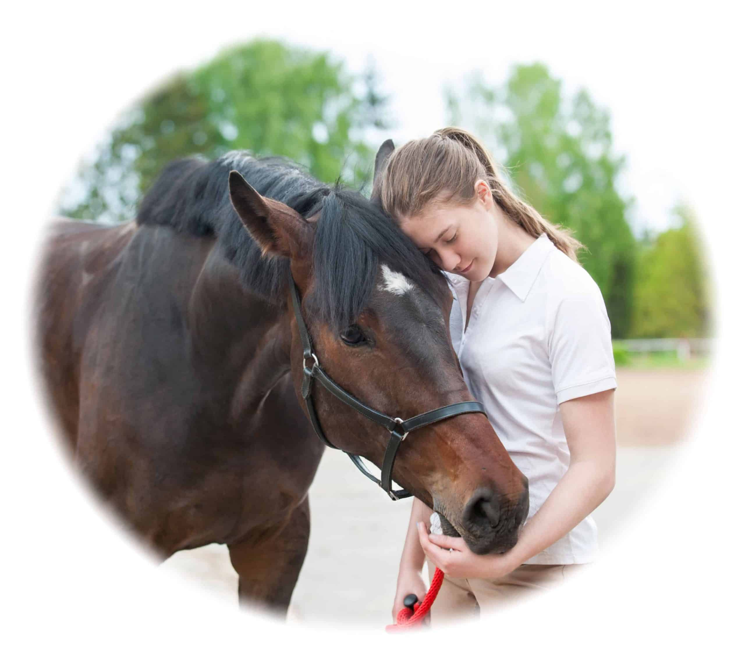 Learn best equine skills to prepare you for a career working with animals