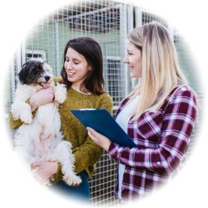Kennel hand and assistant Pay and Salary in Australia