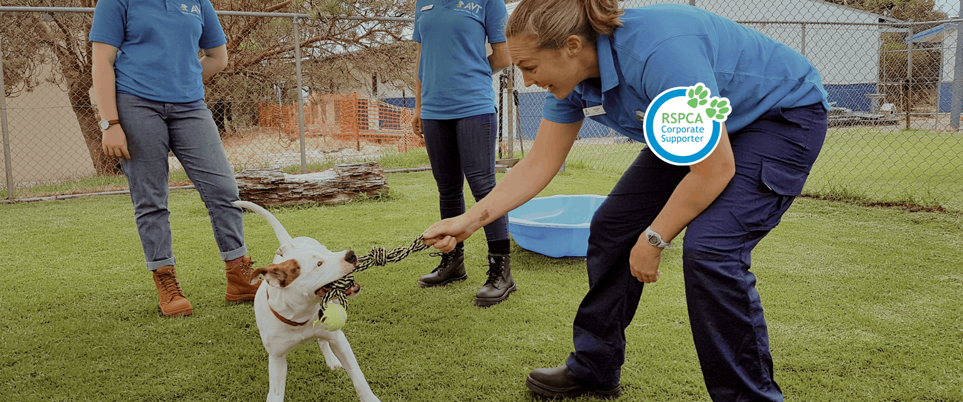 Course at the RSPCA training - welfare