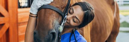 Prerequisite course for veterinary nursing