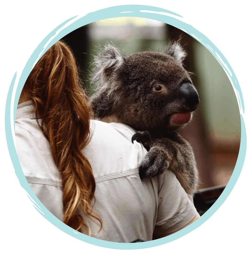 Zoo and Wildlife Care Course - Based in Perth Australia