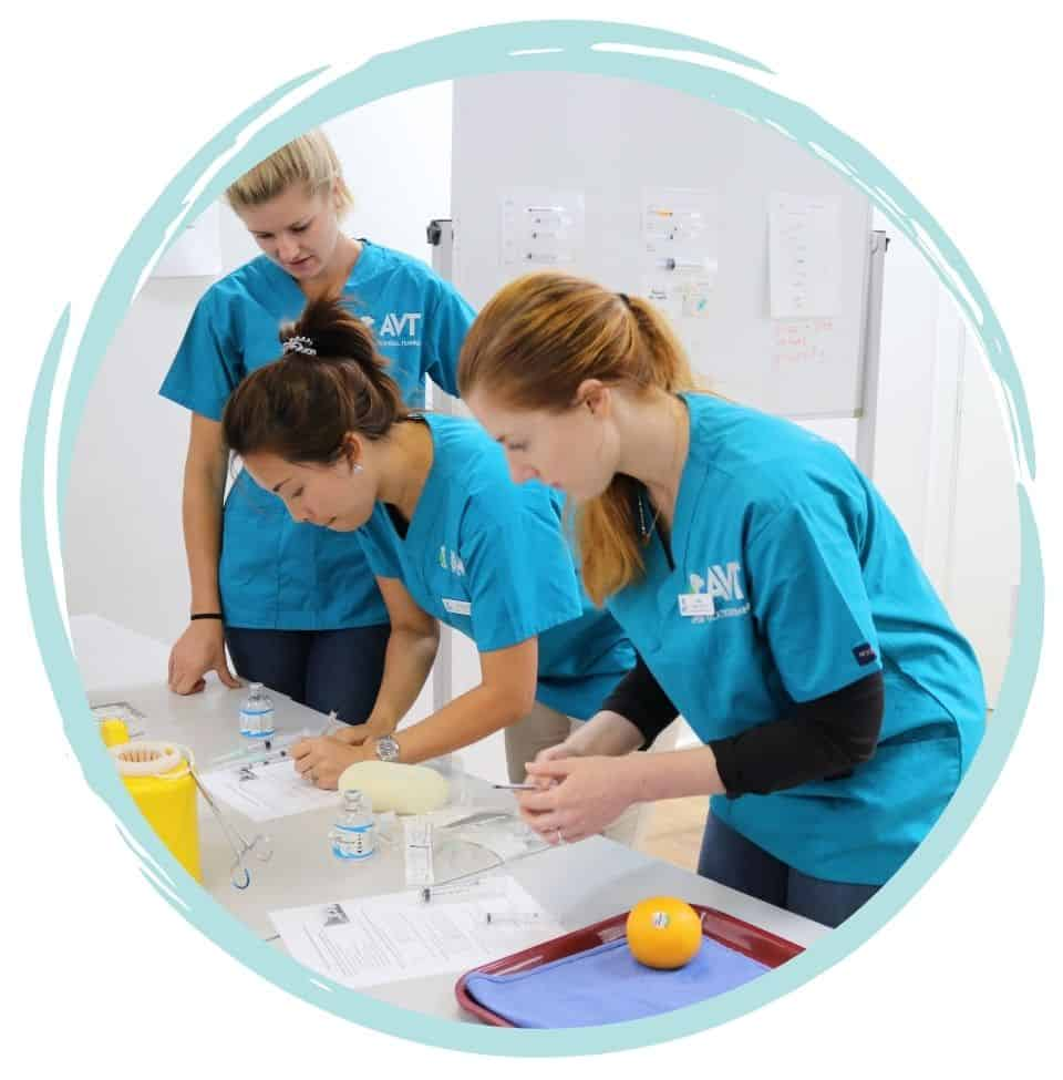 Government Funding and subsidised Vet Nursing course